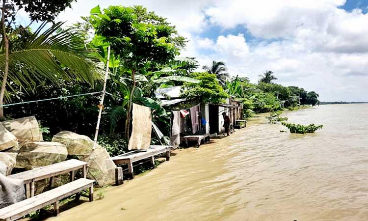 বিপৎসীমার ওপরে তিস্তা-পদ্মা-যমুনার পানি, প্লাবিত নিম্নাঞ্চল