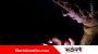 মোবাইলে ইন্টারনেটের স্পিড বাড়ানোর ৫ উপায়